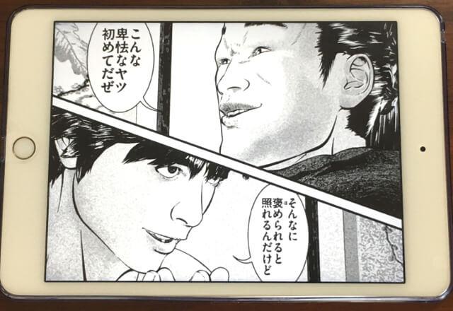 f:id:suyamatakuji:20170522105057j:plain